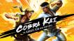 BUY Cobra Kai: The Karate Kid Saga Continues Steam CD KEY