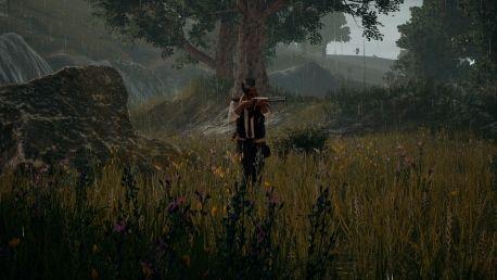 BUY PlayerUnknowns Battlegrounds Steam CD KEY